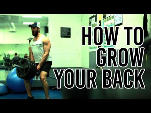 Back Day Workout Motivation