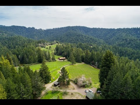 Comptche Ridge Vineyard | Mendocino California
