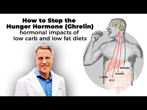 How to stop the Hunger Hormone (Ghrelin): hormonal impacts of low carb and low fat diets