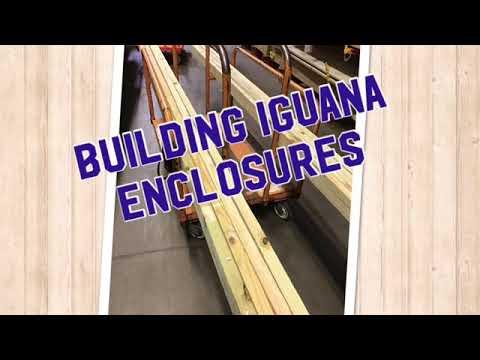 Iguana enclosure builds