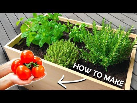 How to Make a Planter Box at Home   Growing your own Vegetables