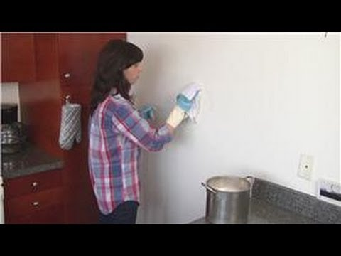 Home Cleaning Instruction : How to Clean Painted Wall Surfaces
