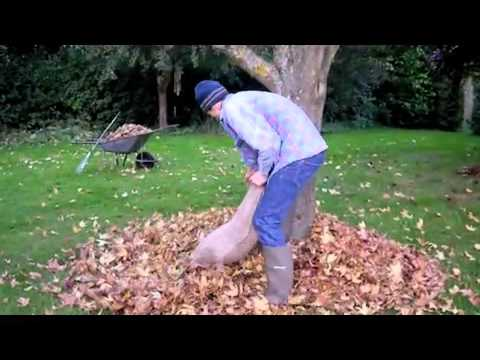 How to make Leaf Mould the Easy Way with Rabbie