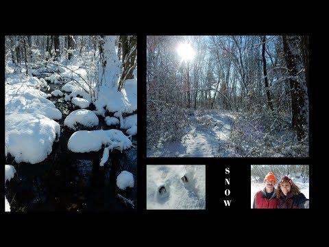 1st Snow Fall  ~ Fairy Forest ~ Bellingham  Massachusetts December 2017