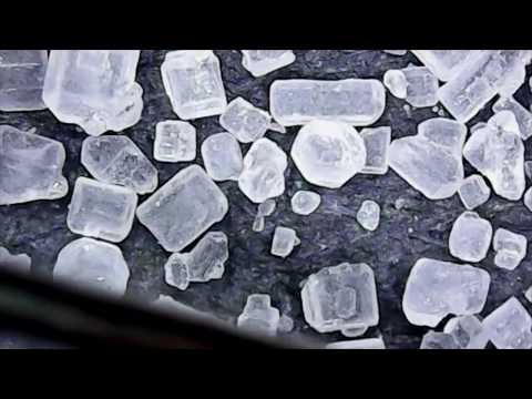 Salt vs. Sugar Under a Microscope