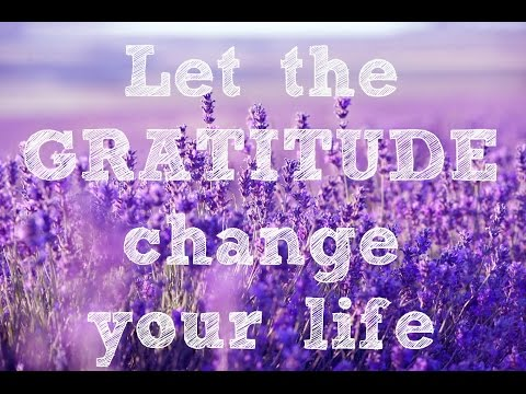 Transform Your Life with Gratitude & Appreciation