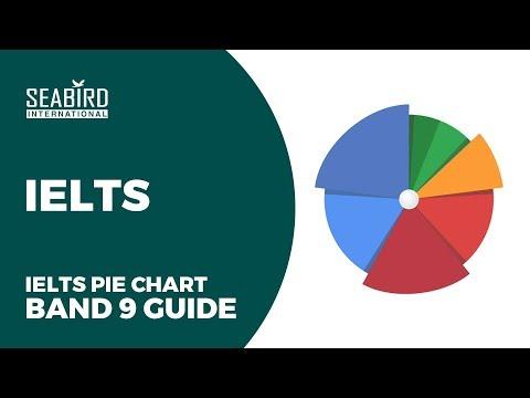IELTS Writing task 1  Pie chart lesson