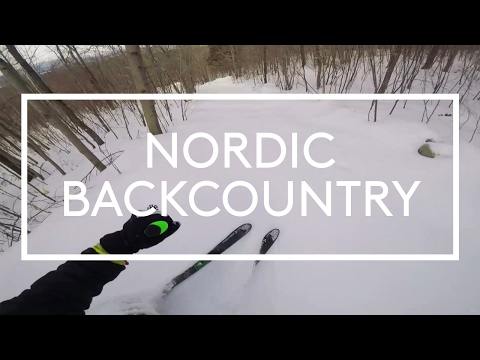Nordic Backcountry (Fischer S-Bound 98)