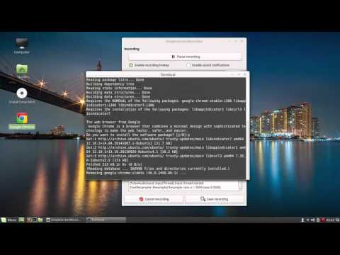 How to Install Google Chrome 64 bits on Linux Mint 17.2