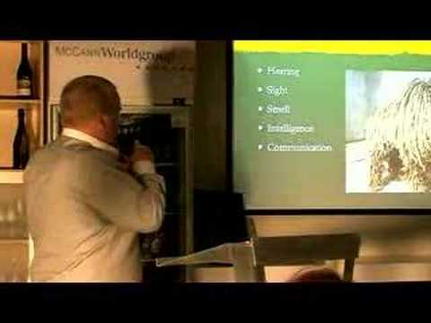 McCann Sydney PowerPoint Karaoke: Presentation #3