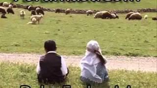 Şıwan Perwer -Yare (orjinal)