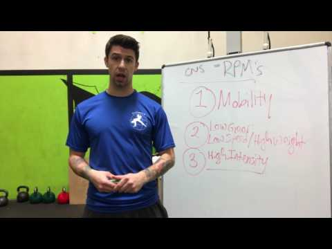 Workout intensity & the Nervous System: How to train according to your stress level