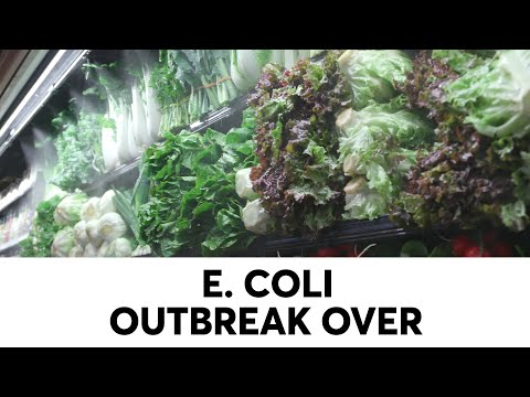 CR: You Can Eat Romaine Lettuce Again | Consumer Reports