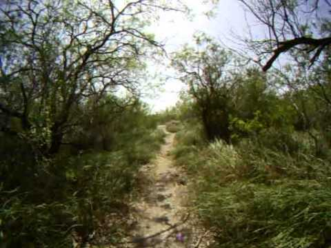 Corpus Christi Oso Creek Braided Trails