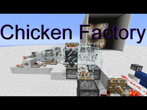 Fully Automatic Chicken Farm