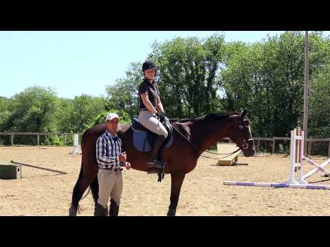 How to Get Your Horse More 'Forward'