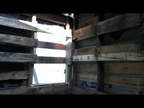 Pallet building - Guest house
