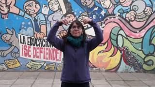 Celebración de la Interculturalidad Liceo A-Nº5, Macúl
