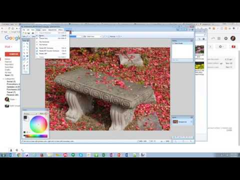 Quick Resizing of an Image for the Web in Paint.net