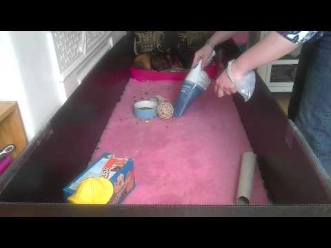 Daily cleaning routine for a C&C guinea pig cage using vet bed or fleece