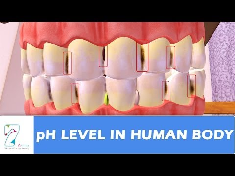 pH Level in human body