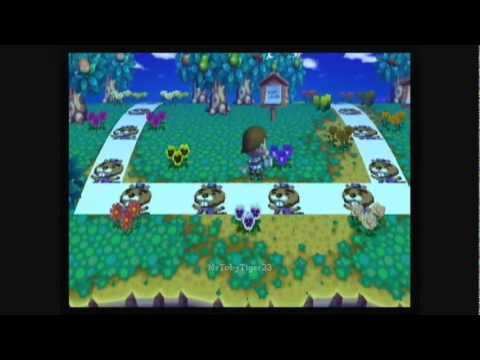 Animal Crossing: City Folk - Getting the Golden Watering Can