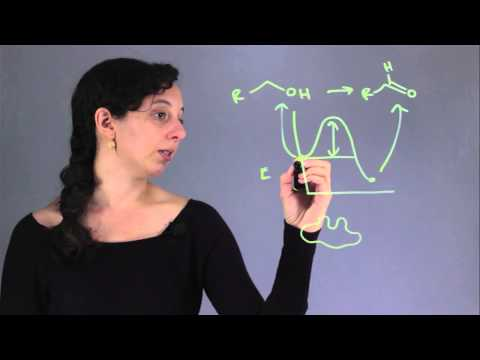 What Function Does an Enzyme Serve in a Chemical Reaction? : Chemistry & Biology Concepts