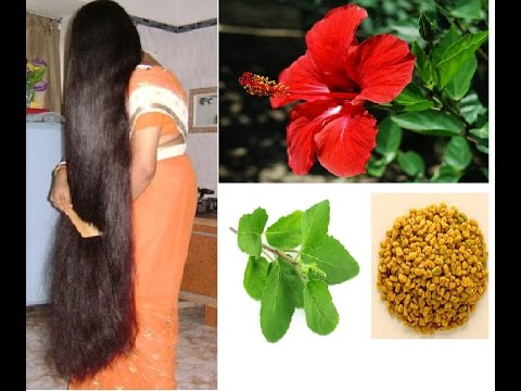 Gudhal hair oil for long soft silky thick hair growth faster~ how to stop hair fall / stop hair loss