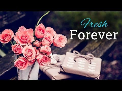 How to make your flowers last longer?