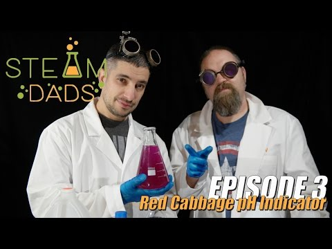 STEAMDads - Episode 3 - Red Cabbage pH Indicator
