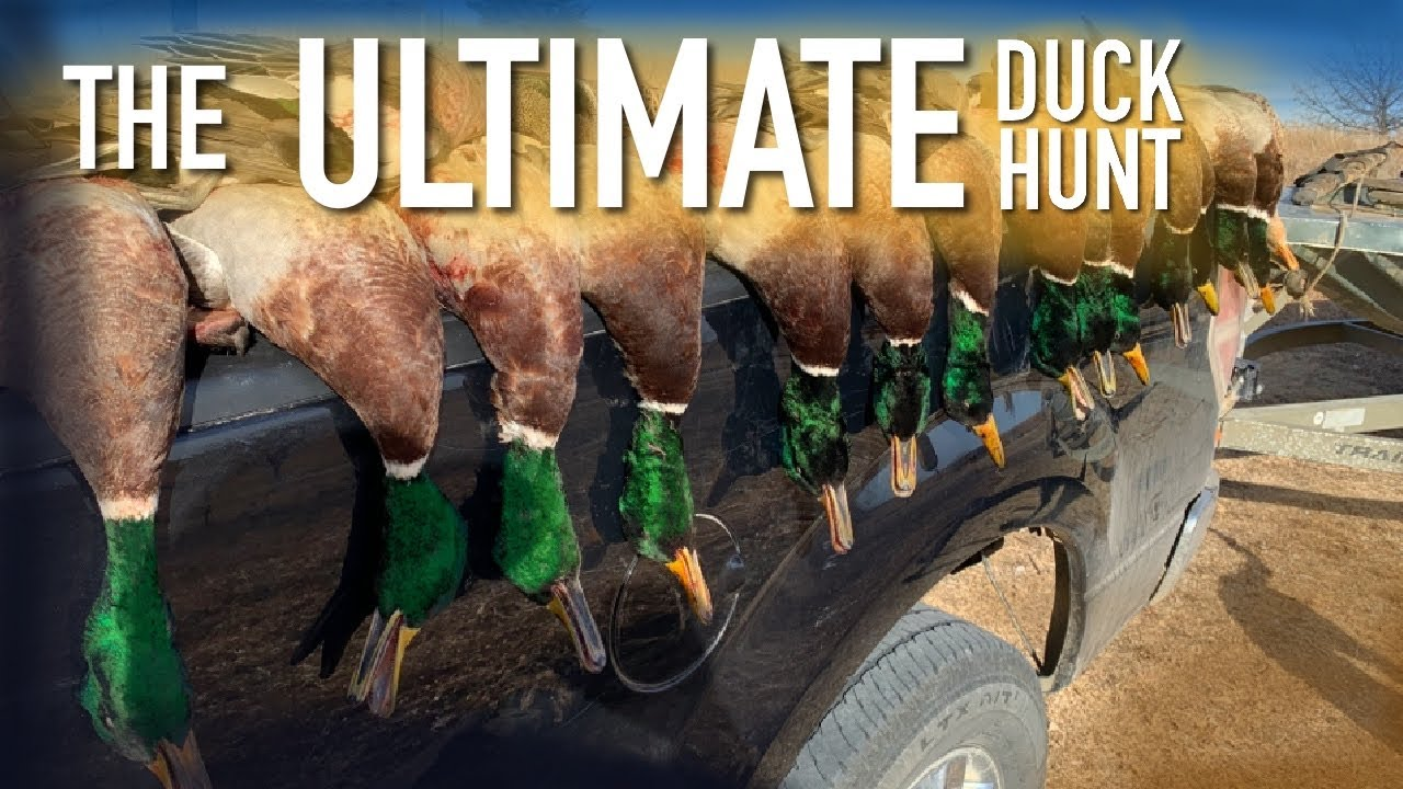 This is the Duck Hunt We all Dream Of! - (Mallard and Pintail Limits)