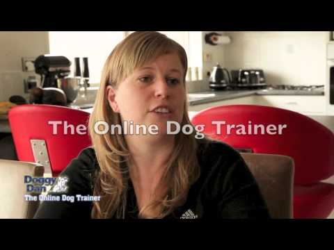How to stop a dog barking - Testimonial