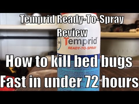 How to kill bed bugs fast in under 72 hours - Temprid Ready-To-Spray Review