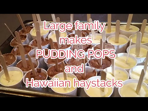 Large Family makes PUDDING POPS and HAWAIIAN HAYSTACKs...QuICK and EaSY