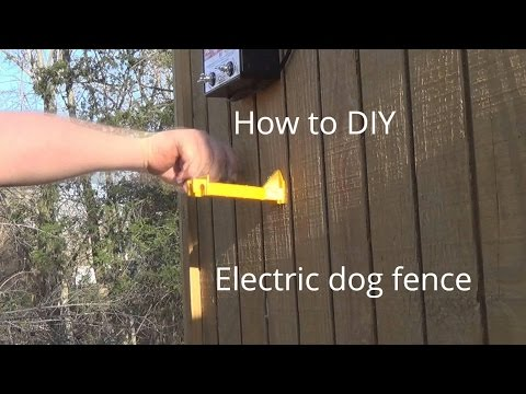 how to make Electric Dog fence cheap
