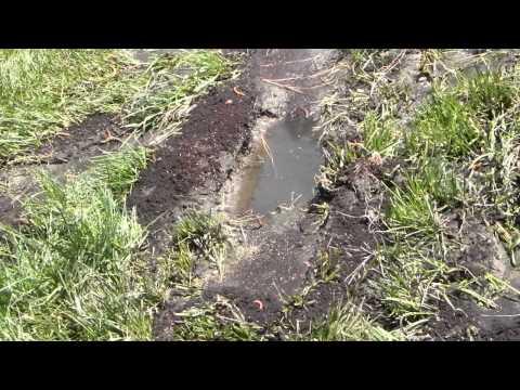 Drain Field Repair by