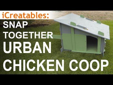 Simple Urban Chicken Coop Build