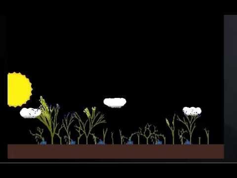 Plant Growth Simulation Prototype - Competing for sunlight