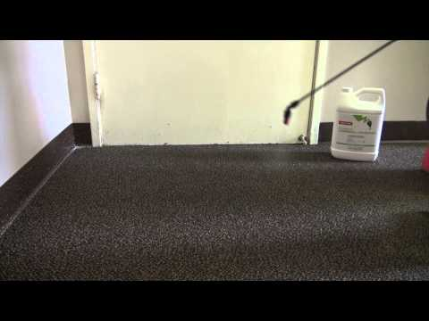 How to Eradicate Bed Bugs by Cleaning Carpets Using Nature-Cide All Purpose