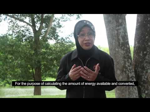Thermodynamics Energy Conversion in Generating Electricity