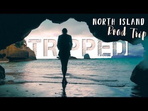 NORTH ISLAND NEW ZEALAND ROAD TRIP - Coromandel Penninsula