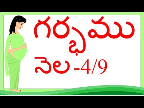 Pregnancy |Telugu | Month 4 | గర్భం నెల 4