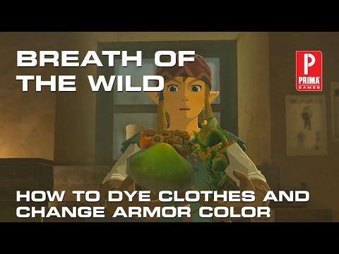Zelda Breath of the Wild: How to Dye Clothes and Change Armor Color