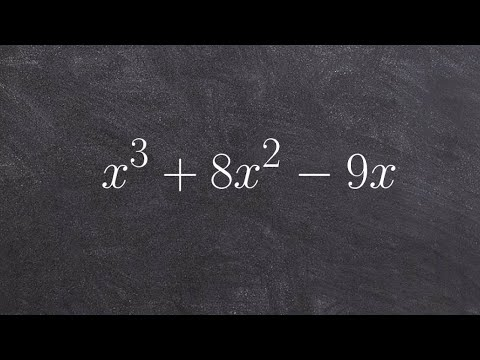 How to factor a polynomial to the third degree by factoring out an x