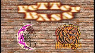 Neowido the Sunhead feat. Mira Luna - Fetter Bass (Original Dub-Tech Mix)