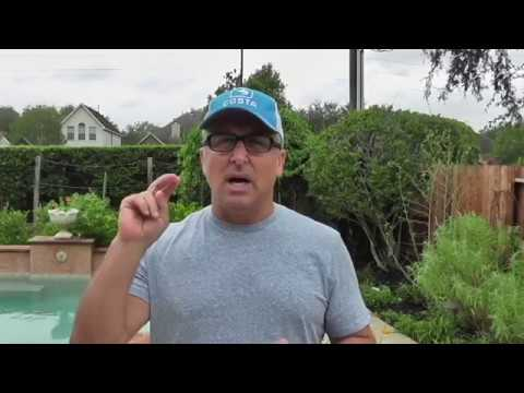 Fall tomato and pepper seedling update - Hurricane Harvey
