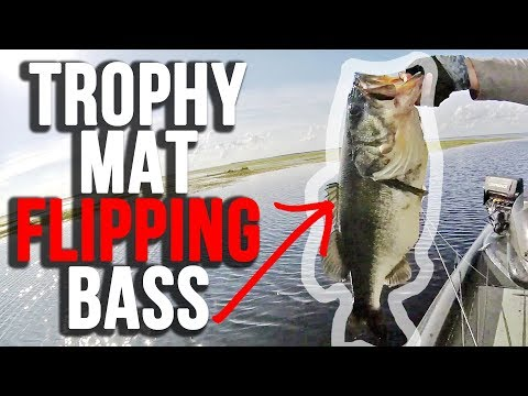 HUGE Fish Flipping Winter Mats on Lake Kissimmee
