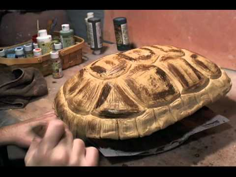 Mr Turtles Shell