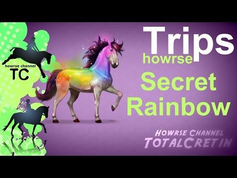 Secret Rainbow - Howrse Trips