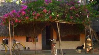 Village house  Chennai  Tamil Nadu